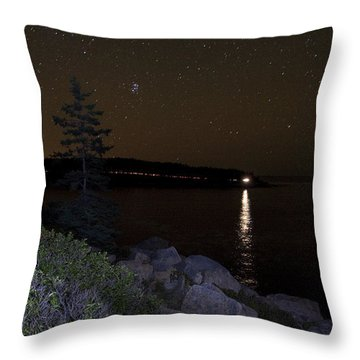Rounding Otter Point Throw Pillow by Brent L Ander