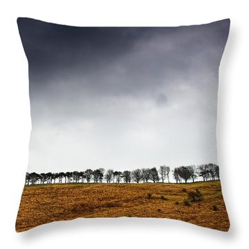 Row Of Trees In A Field, Yorkshire Throw Pillow by John Short