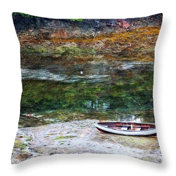 Throw Pillow featuring the photograph Rowboat In The Slough by Michele Cornelius