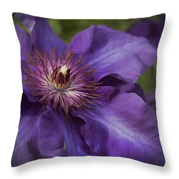 Royal Purple Jackmanii Clematis Blossom Throw Pillow by Kathy Clark