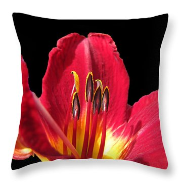 Throw Pillow featuring the photograph Royal Red by Debbie Portwood
