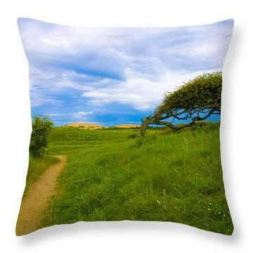 Rubjerg Path Throw Pillow