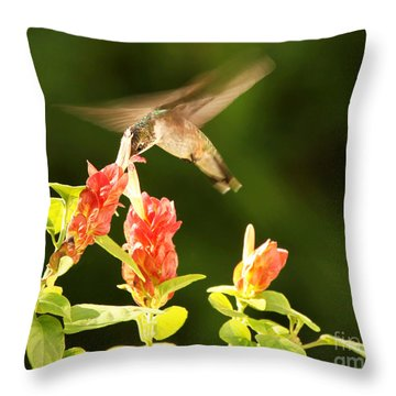 Throw Pillow featuring the photograph Ruby Throat Hummingbird by Luana K Perez