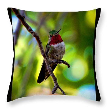 Throw Pillow featuring the photograph Ruby Throated Hummingbird by Susanne Still