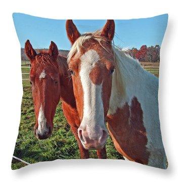 Ruff 'n Reddy Throw Pillow