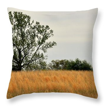 Rural Landscape Throw Pillow by Marty Koch