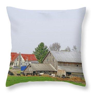 Rural Vermont Farm Scene Throw Pillow by Deborah Benoit