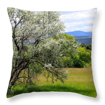 Russian Olive Throw Pillow by Karon Melillo DeVega