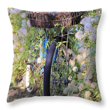 Rustic Bicycle Throw Pillow by Athena Mckinzie