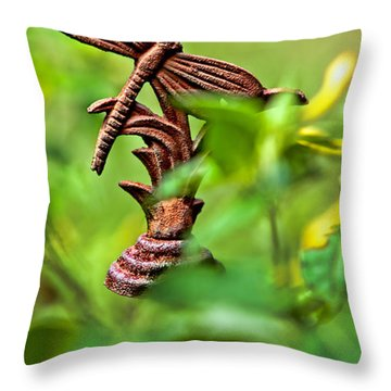 Rusty Dragonfly Throw Pillow by Christopher Holmes