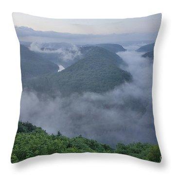 Saar Loop In The Morning Fog Throw Pillow by Heiko Koehrer-Wagner