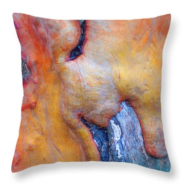 Throw Pillow featuring the digital art Sacred by Richard Laeton