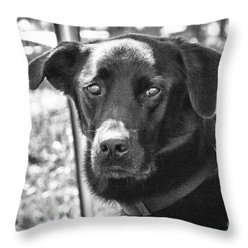 Sad Eyes Throw Pillow by Eunice Gibb