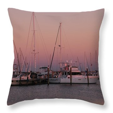 Throw Pillow featuring the photograph Safe Harbor by Brian Wright