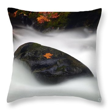 Safe Haven Throw Pillow by Mike  Dawson