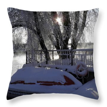 Safe Winter Throw Pillow by Sami Tiainen