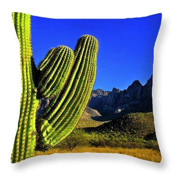 Throw Pillow featuring the photograph Saguaro And Catalina Mountains by Jim Moore