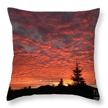 Sailor's Delight Throw Pillow