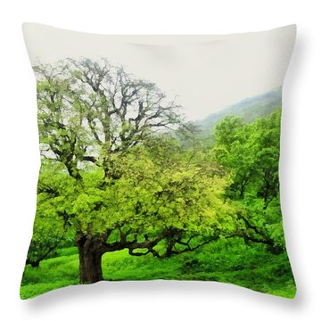 Salalah Green Throw Pillow