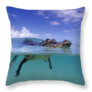 Salt Water Crocodile Throw Pillow by Franco Banfi and Photo Researchers