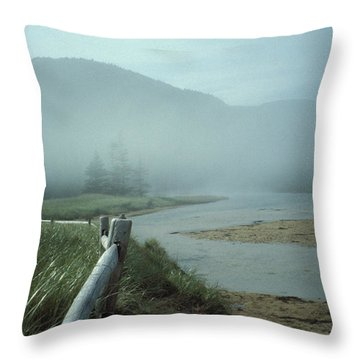 Sand Beach Fog Throw Pillow