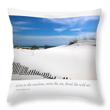 Sand Dunes Dream 3 Throw Pillow