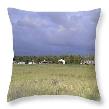 Sand Dwellers Throw Pillow by Pamela Patch