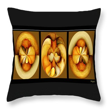 Sanded Woods Triptych Dark Throw Pillow by Paula Ayers