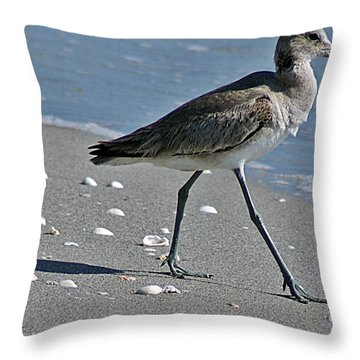 Sandpiper 1 Throw Pillow by Joe Faherty