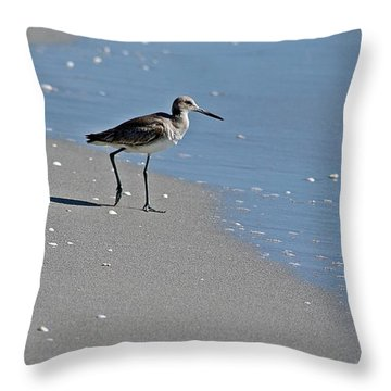 Sandpiper 2 Throw Pillow by Joe Faherty