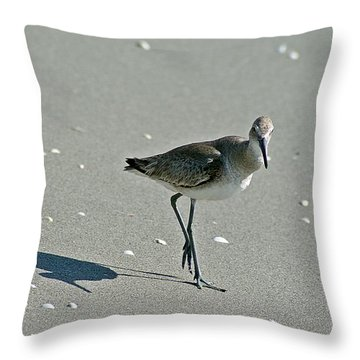 Sandpiper 3 Throw Pillow by Joe Faherty