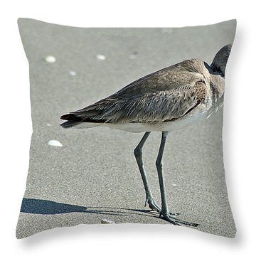 Sandpiper 4 Throw Pillow by Joe Faherty