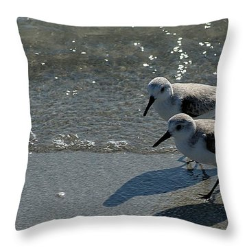 Sandpiper 5 Throw Pillow by Joe Faherty