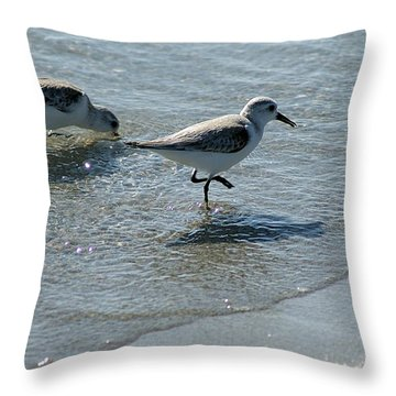 Sandpiper 7 Throw Pillow by Joe Faherty