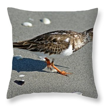 Sandpiper 9 Throw Pillow by Joe Faherty