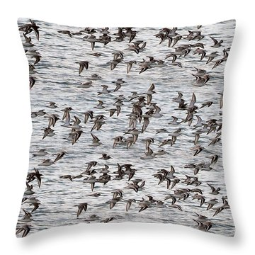 Throw Pillow featuring the photograph Sandpipers In Flight by Dan Friend