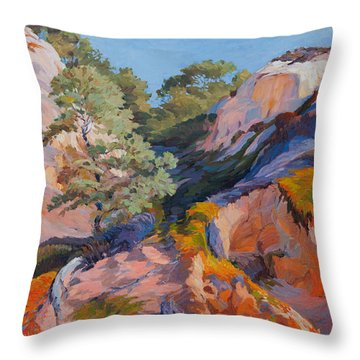 Sandstone Canyon At Torrey Pines Throw Pillow