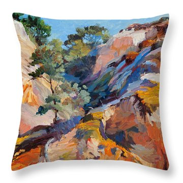 Sandstone Canyon Throw Pillow