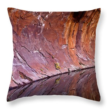 Sandstone Reality Throw Pillow by Mike  Dawson