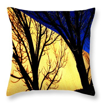 Throw Pillow featuring the photograph Santa Fe Afternoon by Susanne Still