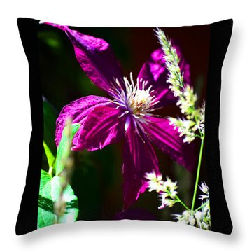 Throw Pillow featuring the photograph Santa Fe Summer by Susanne Still