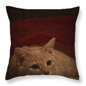 Santa Is Coming Throw Pillow by Kim Henderson