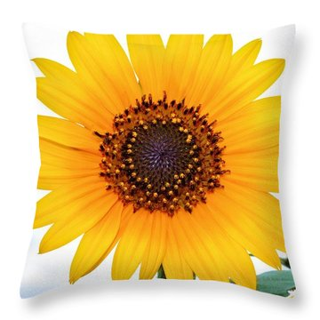 Sassy Sunflower Throw Pillow