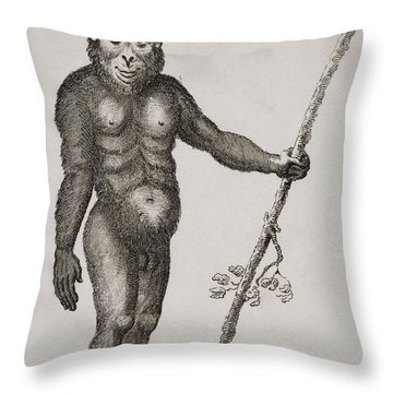 Satyrus, Ourang Outang. Engraved By Throw Pillow by Ken Welsh