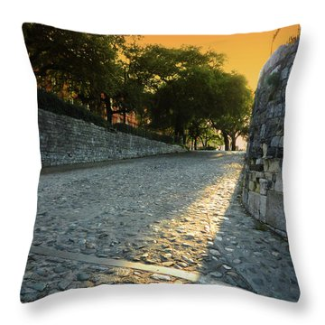 Throw Pillow featuring the photograph Savannah Sunset by Paul Mashburn