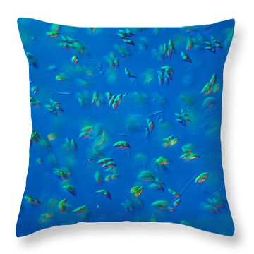 Scenedesmus Sp. Algae, Lm Throw Pillow by M. I. Walker
