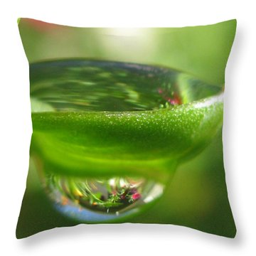 Scenic Photography Throw Pillow