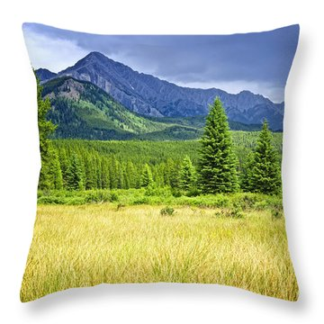 Scenic View In Canadian Rockies Throw Pillow by Elena Elisseeva