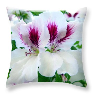 Scented Geraniums 2 Throw Pillow by Will Borden