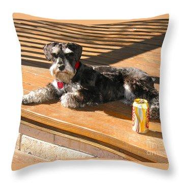 Schnauzer In The Sun Throw Pillow by Phyllis Kaltenbach